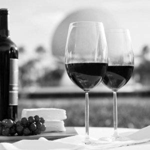 Vin og Delikatesser