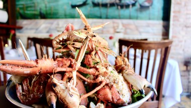 Video: Suveræn skaldyrsitaliener bringer Østerbros restaurantscene i kog