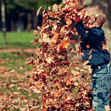 5 fede aktiviteter i efterårsferien for børn i Aarhus